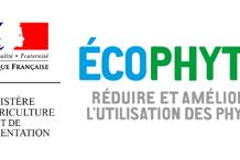 Logo CEPP
